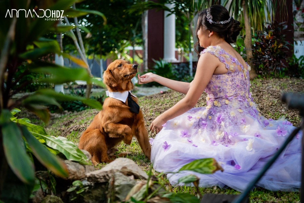 Hacienda para bodas Pet friendly Merida